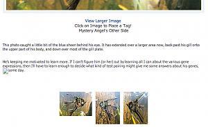 Click image for larger version.  Name:Screenshot 2014-02-22 22.48.04.jpg Views:6 Size:17.3 KB ID:72