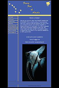 Click image for larger version.  Name:HtmlToImage.jpg Views:11 Size:94.9 KB ID:199