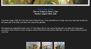 Click image for larger version.  Name:geek2nurse.jpg Views:7 Size:50.4 KB ID:71