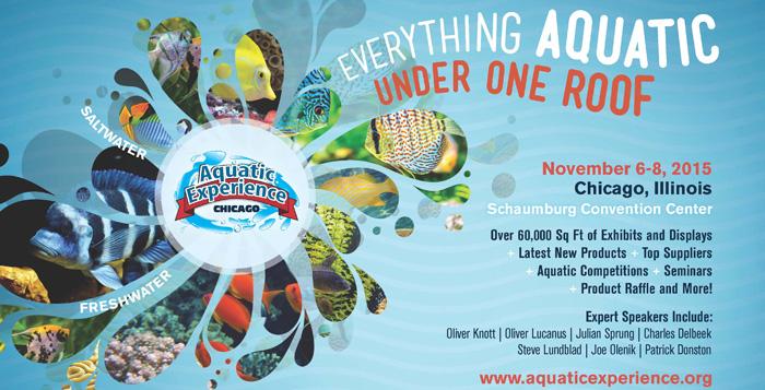 Aquatic Experience - Chicago Show